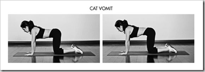 Cat Vomit thumb A Better Occams Protocol: Body by Science Meets the 4 Hour Body