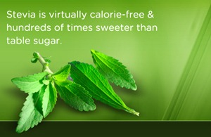 Post image for Stevia: The Perfect Slow Carb Sugar Substitute!